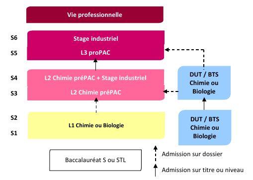 organigramme admission L3 ProPAC