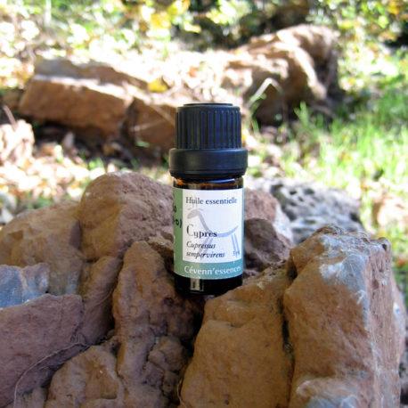 huile essentielle de cypres cevennnessences