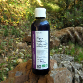 hydrolat de thym à linalol par Cévenn'essences