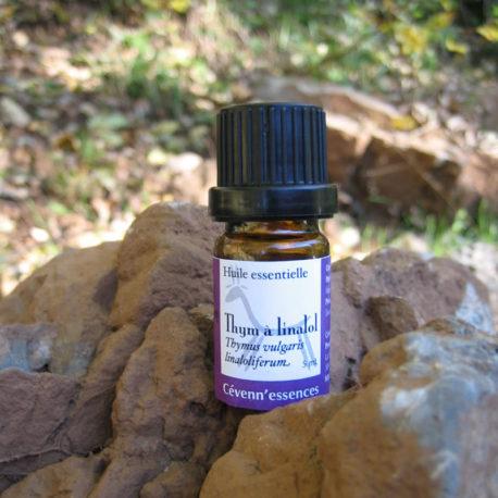 huile essentielle de thym à linalol