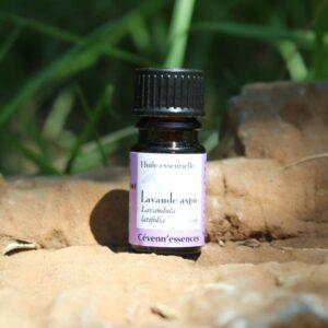 huile essentielle de lavande aspic biologique