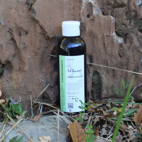 hydrolat ail des ours
